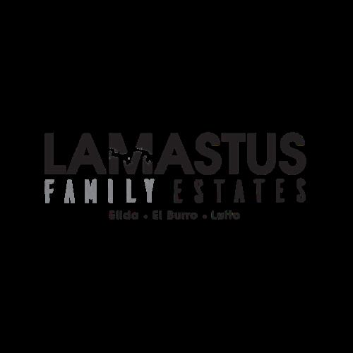 Lamastus Family