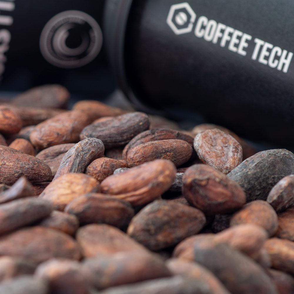 Panama Organic Cacao Beans - Raw