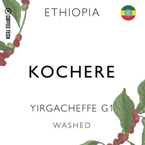 Ethiopia Yirgacheffe G1 Kochere Washed