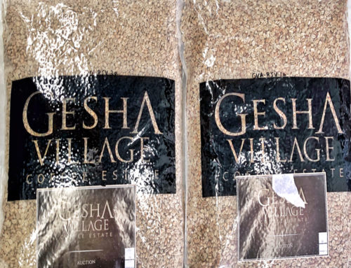 New arrival Gesha Village auction lots – Oma Gesha 1931