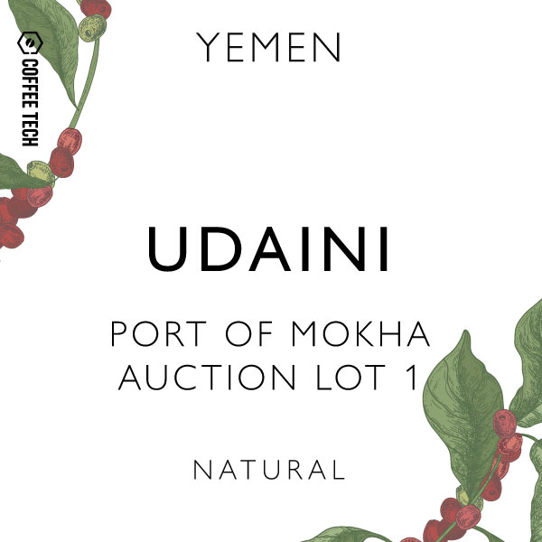 Yemen Udaini Port of Mokha Auction Lot 1 Essam Abdo Muhsin
