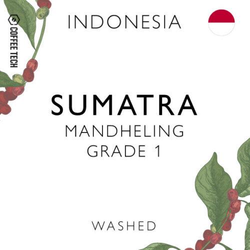 Indonesia Sumatra Mandheling GR 1