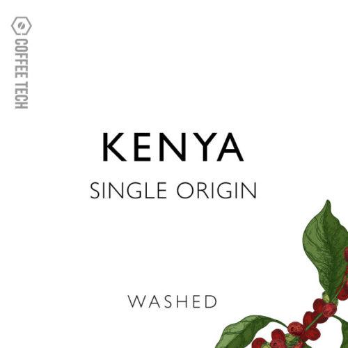 Kenya Washed