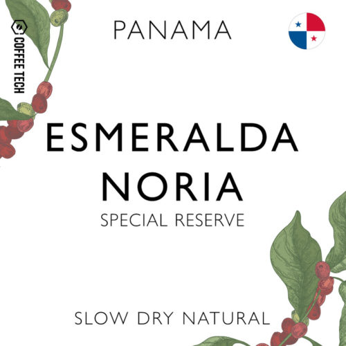 Panama Geisha Esmeralda Special Reserve Noria Slow Dry Natural