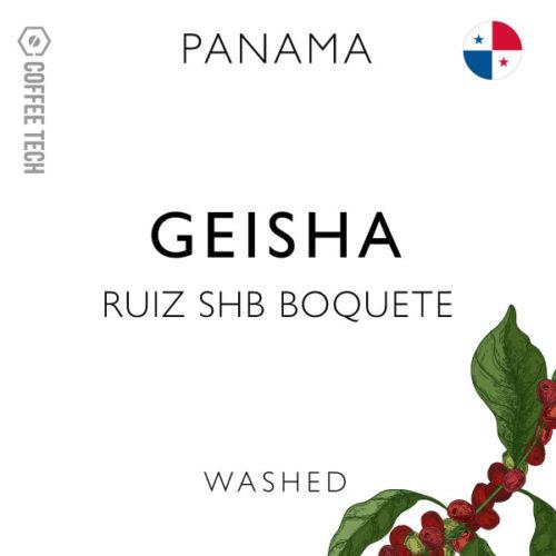 Panama Geisha Ruiz SHB Boquete - Washed