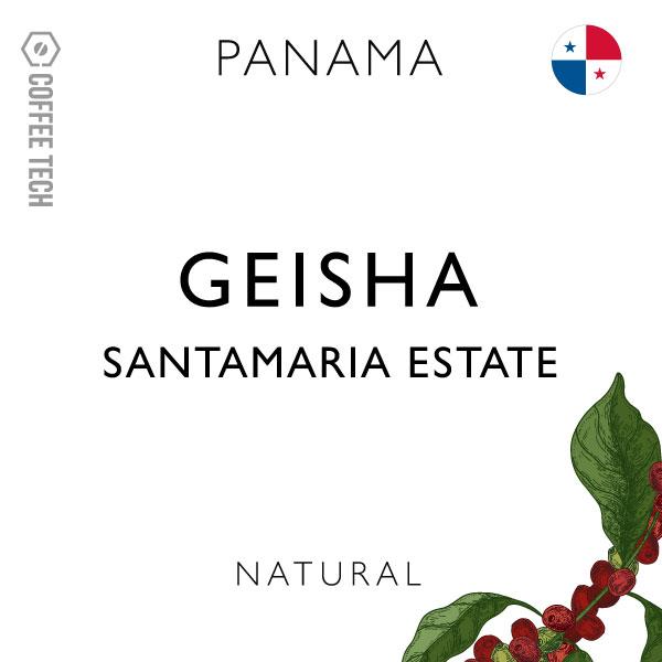 Santamaria Estate Classic Geisha - Natural