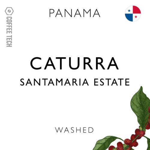 Panama Santamaria Estate Caturra- Washed