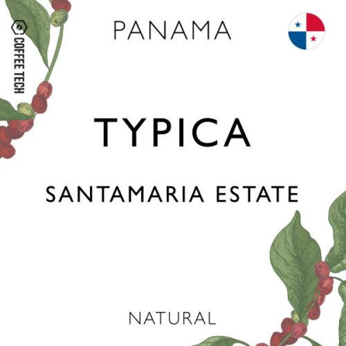 Panama Santamaria Estate Typica - Natural