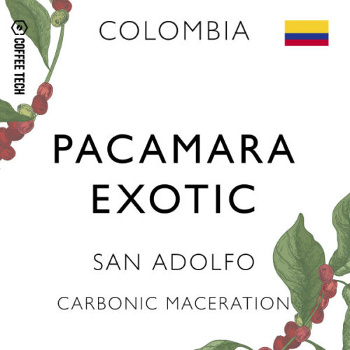 Colombia Pacamara Exotic San Adolfo – Carbonic Maceration