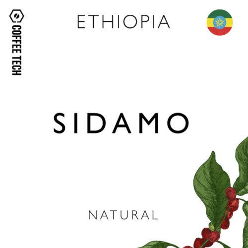 Ethiopia Natural Sidamo Single Origin