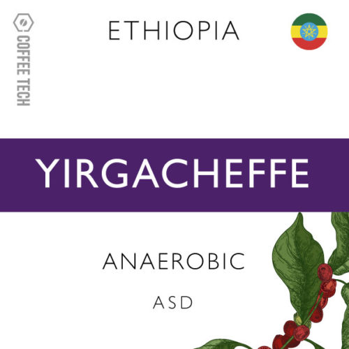 Ethiopia Yirgacheffe ASD